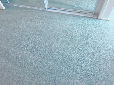 End of lease cleaned carpet in the Blue Mountains. This is the cleaned example