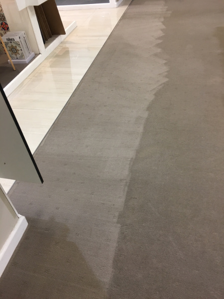 general carpet steam cleaning